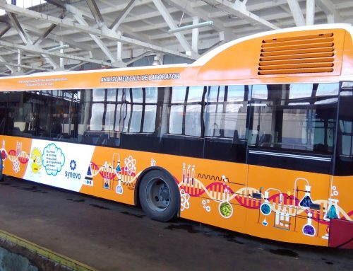 Branding autobuz SYNEVO